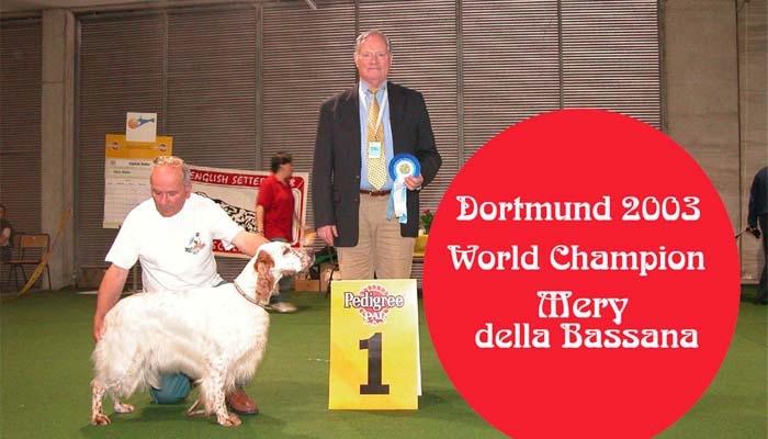 Mery della Bassana :: campione italiana internazionale mondiale bellezza