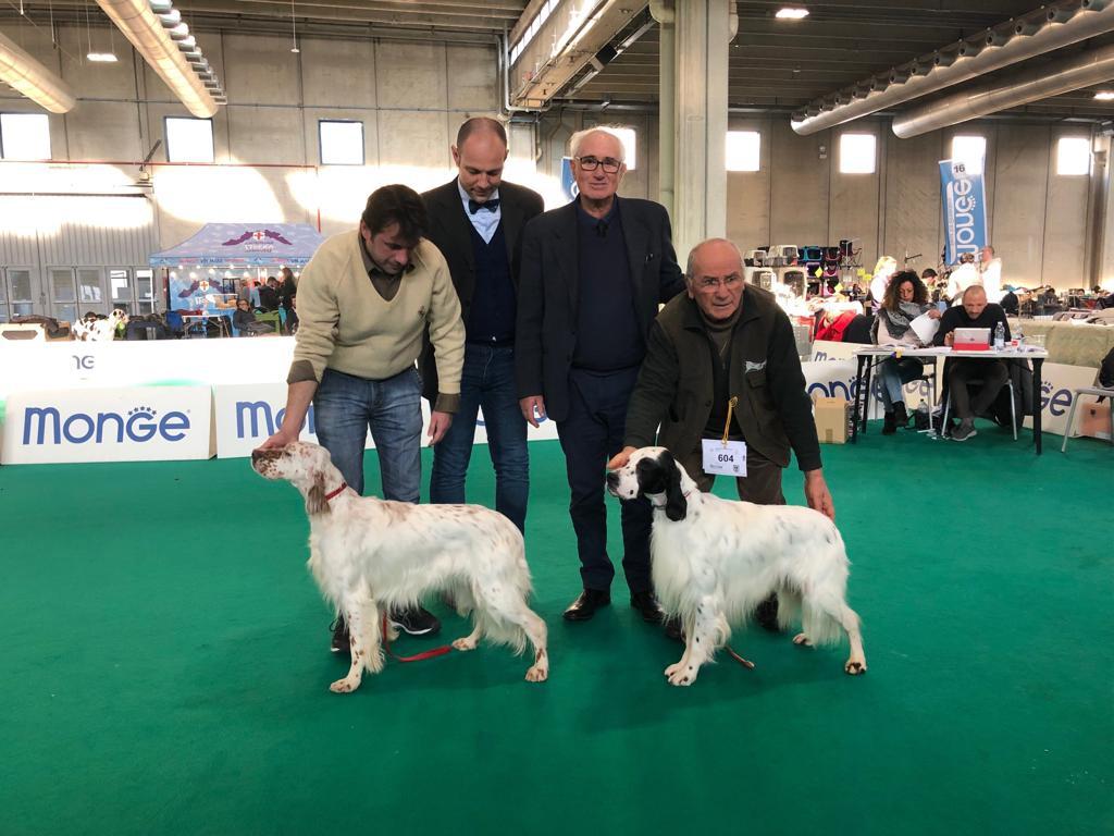 Yaki della Bassana campione lavoro italiano & Berna della Bassana