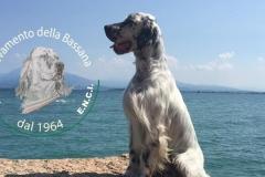 Duke della Bassana :: da lago di Garda