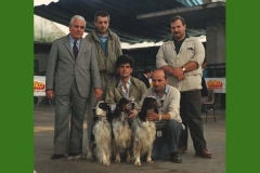 """gruppo STORICO : REMO, CIBA e MARK """"della Bassana"""""""